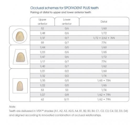 Зъбна гарнитура Spofadent Plus